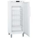 GGv 5010 | LIEBHERR Mélyhűtő szekrény